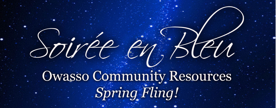 Spring Fundraiser – Soiree en...